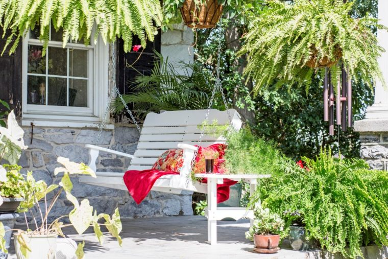 white porch swing surrounded by plants